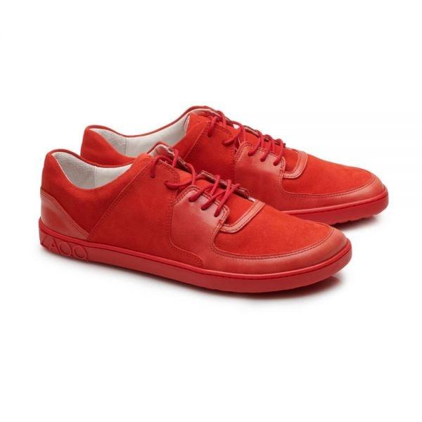 IVIQ Red